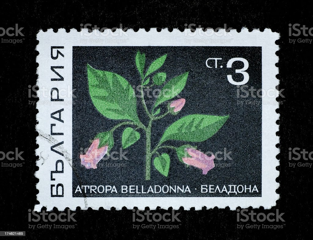 Postage Stamp: Deadly Nightshade (Atropa bella-donna) royalty-free stock photo