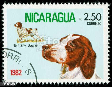 Stamp with picture of a dog, scanned on black background. In aRGB color for beautiful prints.