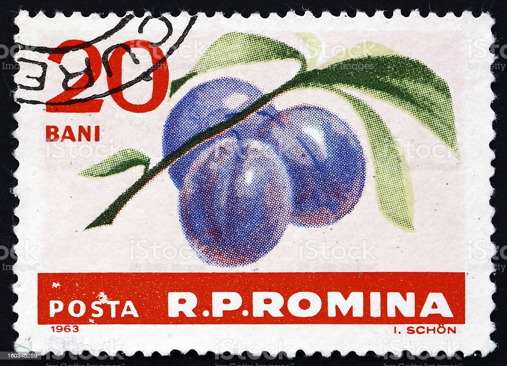 Postage stamp Romania 1963 Plums, Prunus Domestica, Fruit royalty-free stock photo