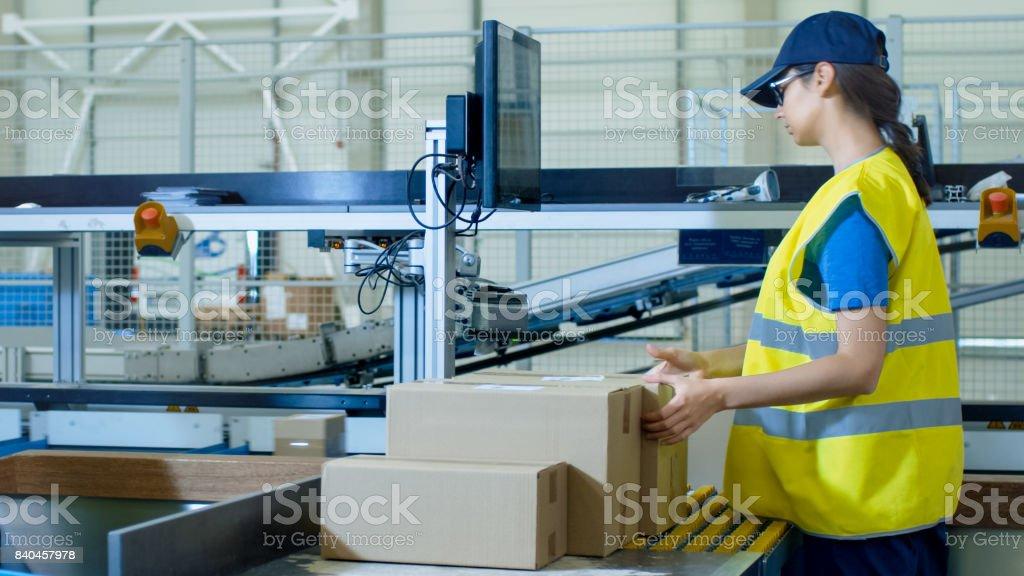 Postal Sorting Office Workers Put Cardboard Boxes on Belt Conveyor stock photo