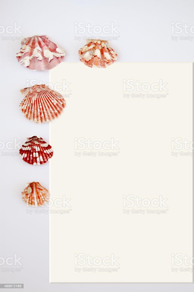 Postcard and shells. royalty-free stock photo