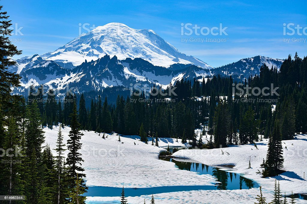 Postcard of Mount Rainier stock photo