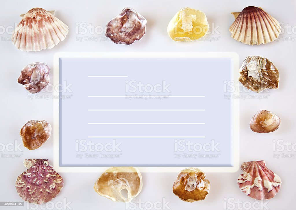 Postcard with shells. royalty-free stock photo