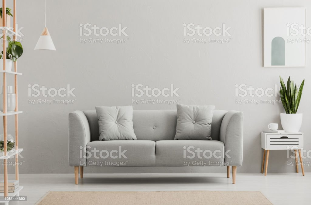 Poster above white cabinet with plant next to grey sofa in simple living room interior. Real photo stock photo