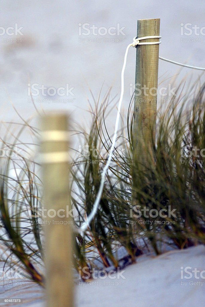 Posts on Beach royalty-free stock photo