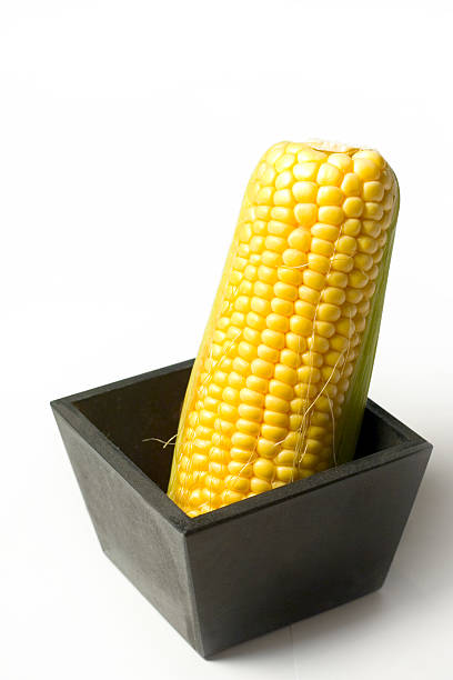 Pot corn2 stock photo
