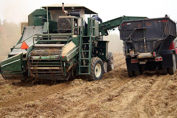Potato Harvester stock photo