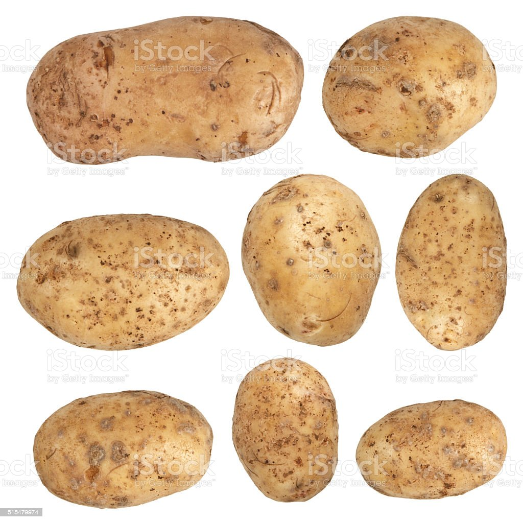 Potato isolated on white background stock photo