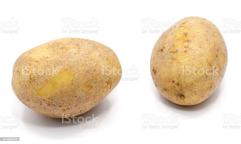 Potato isolated on white stock photo