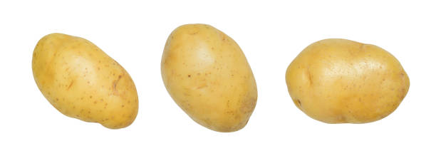 Potato isolated on white with clipping path stock photo