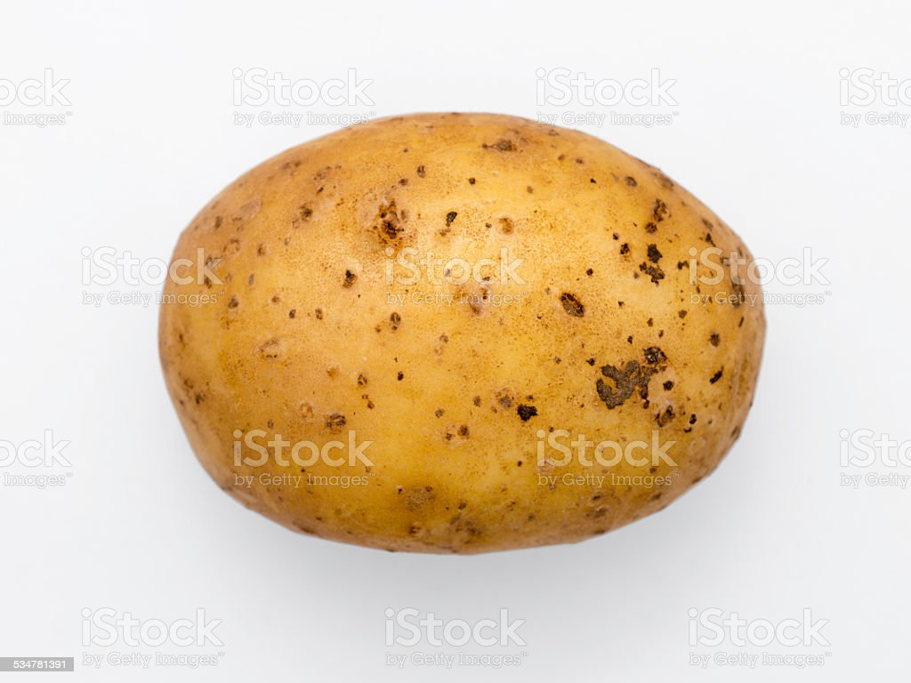 potato isolated stock photo