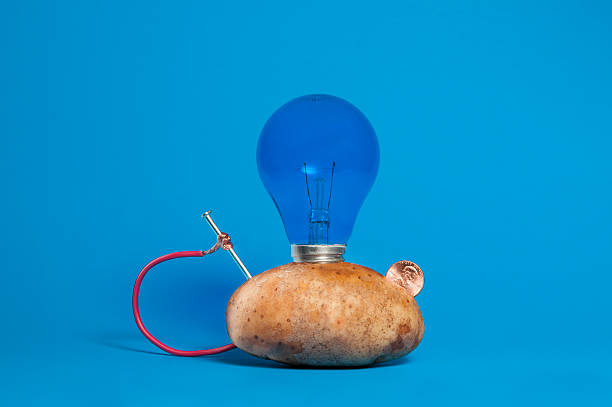 Royalty Free Potato Light Bulb Pictures, Images and Stock ...