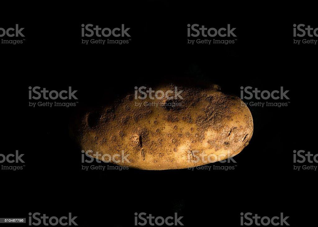 Potato on the black background stock photo