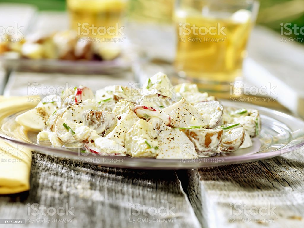 Potato Salad at a Picnic royalty-free stock photo