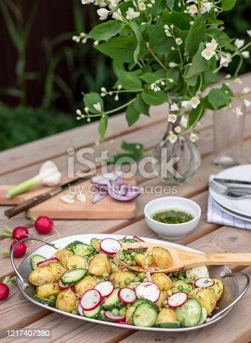 647209792 istock photo potato salad on the table in the garden 1217407380