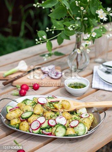 647209792 istock photo potato salad on the table in the garden 1217408309