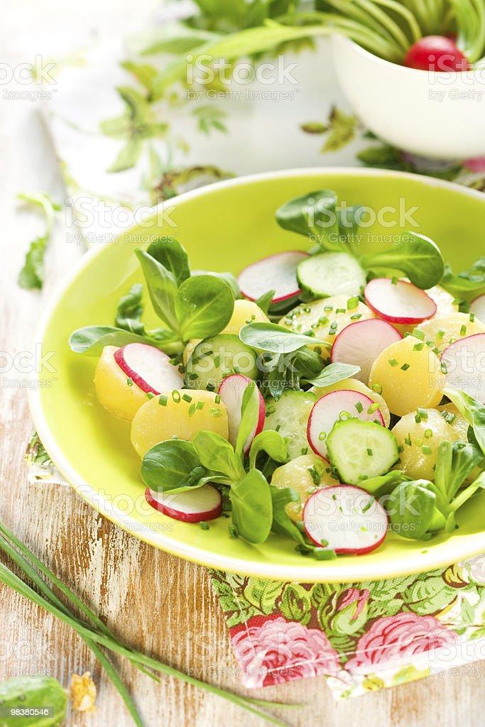 Potato salad with radishes royalty-free stock photo