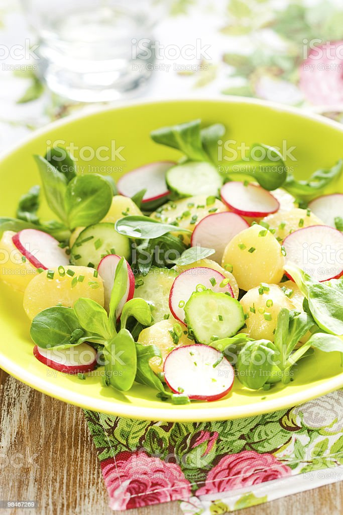 Potato salad with radishes royalty-free stock photo