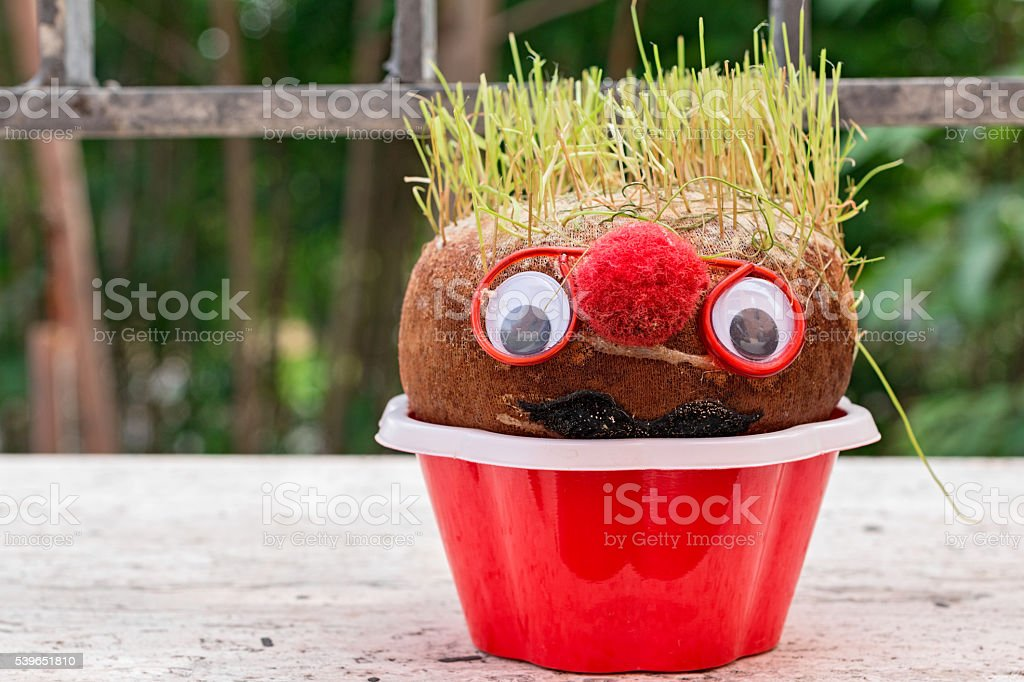 potato with human face stock photo