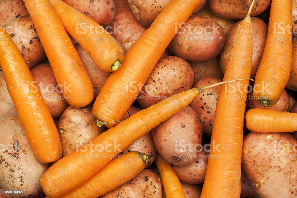 Potatoes and carrots royalty-free stock photo