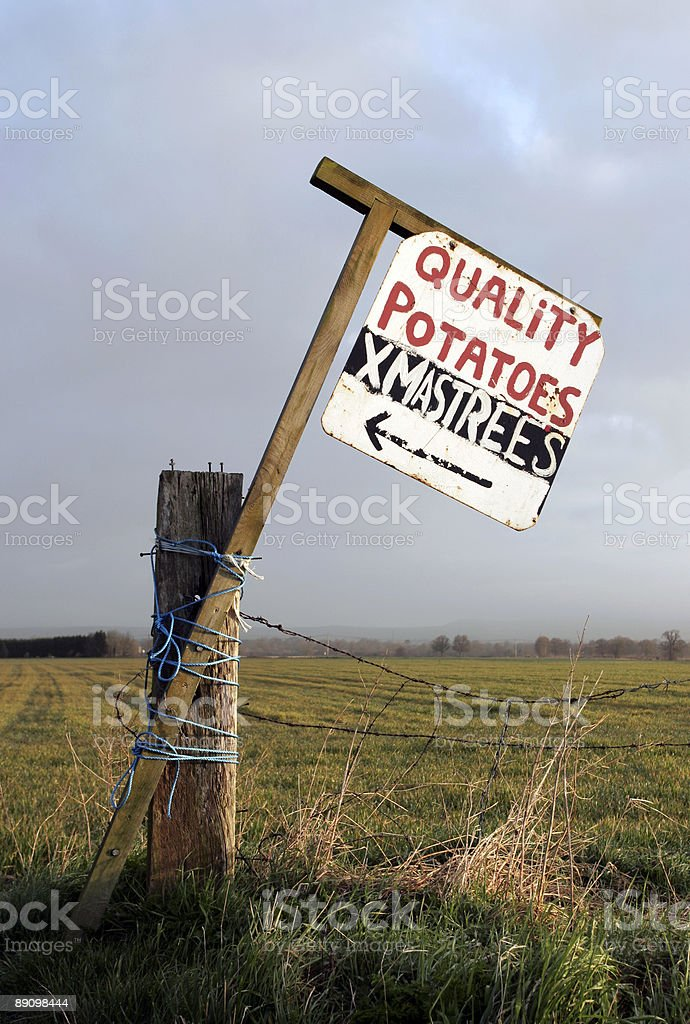 Potatoes and Christmas tree sign royalty-free stock photo