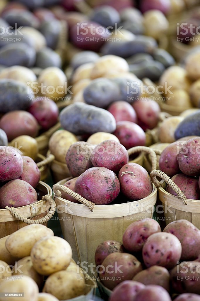 Potatoes at a Montreal Farmers Market, Quebec, Canada royalty-free stock photo