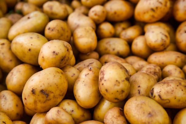 potatoes at the farmer's market stock photo