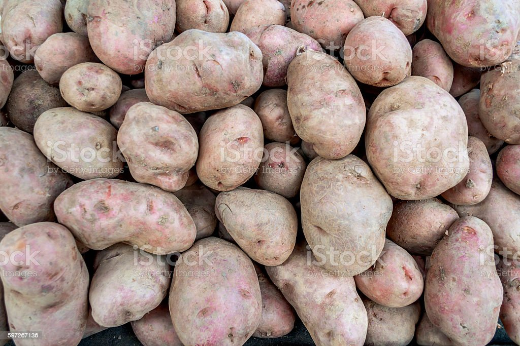 Potatoes for selling at vegetable market royalty-free stock photo