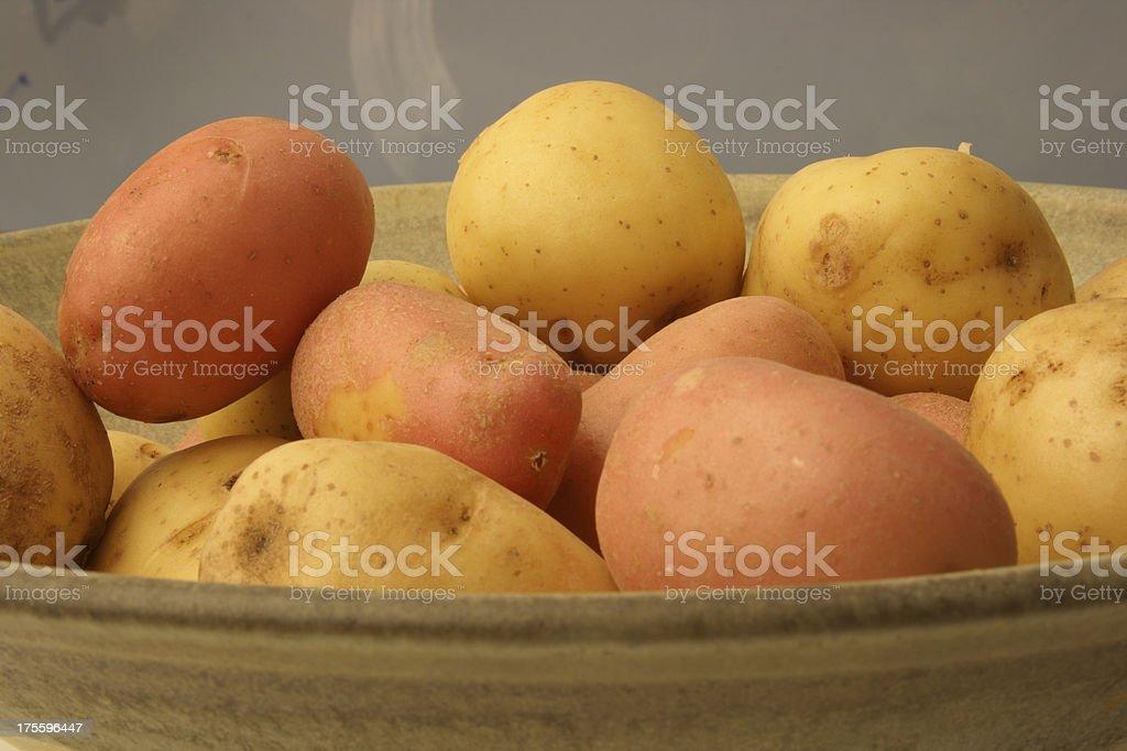 Potatoes Harvest royalty-free stock photo
