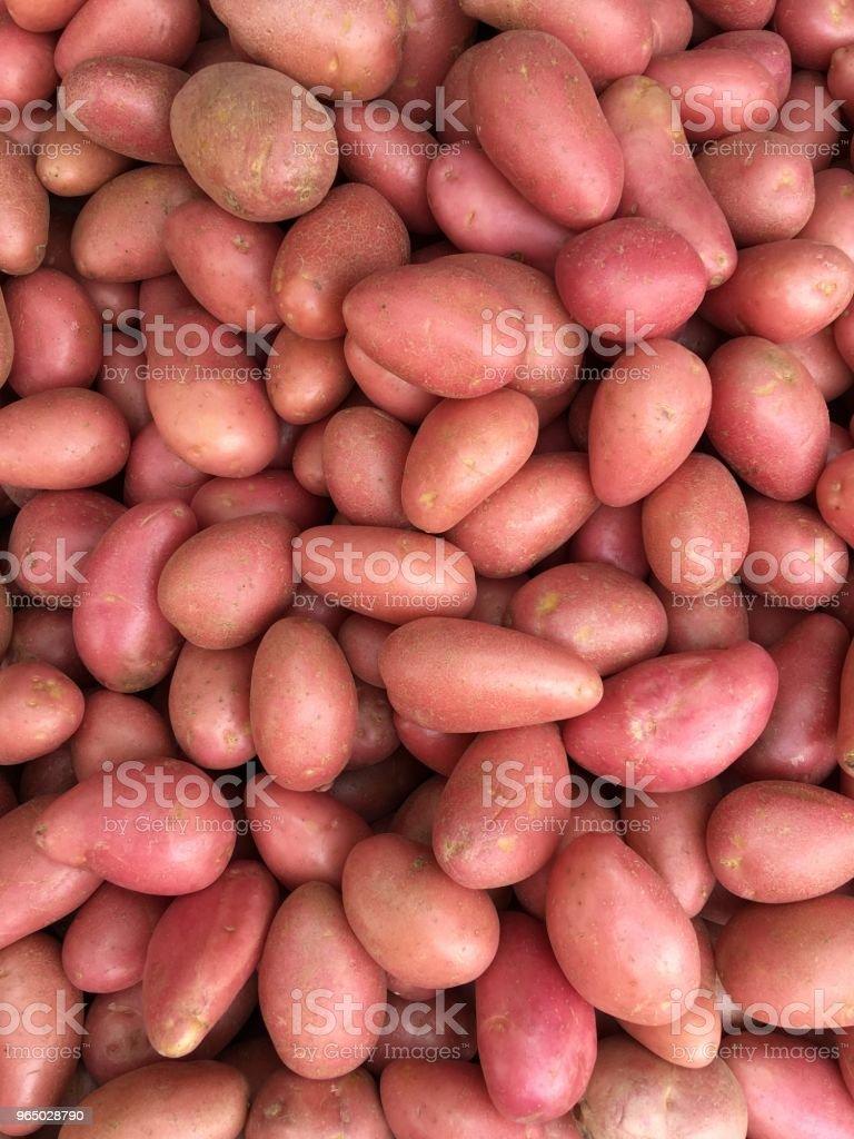 Potatoes Israel market royalty-free stock photo