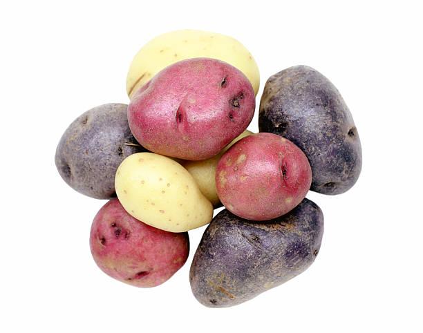 kartoffeln - lila palette stock-fotos und bilder