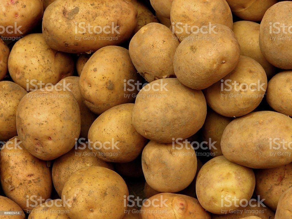 Картофель Стоковые фото Стоковая фотография
