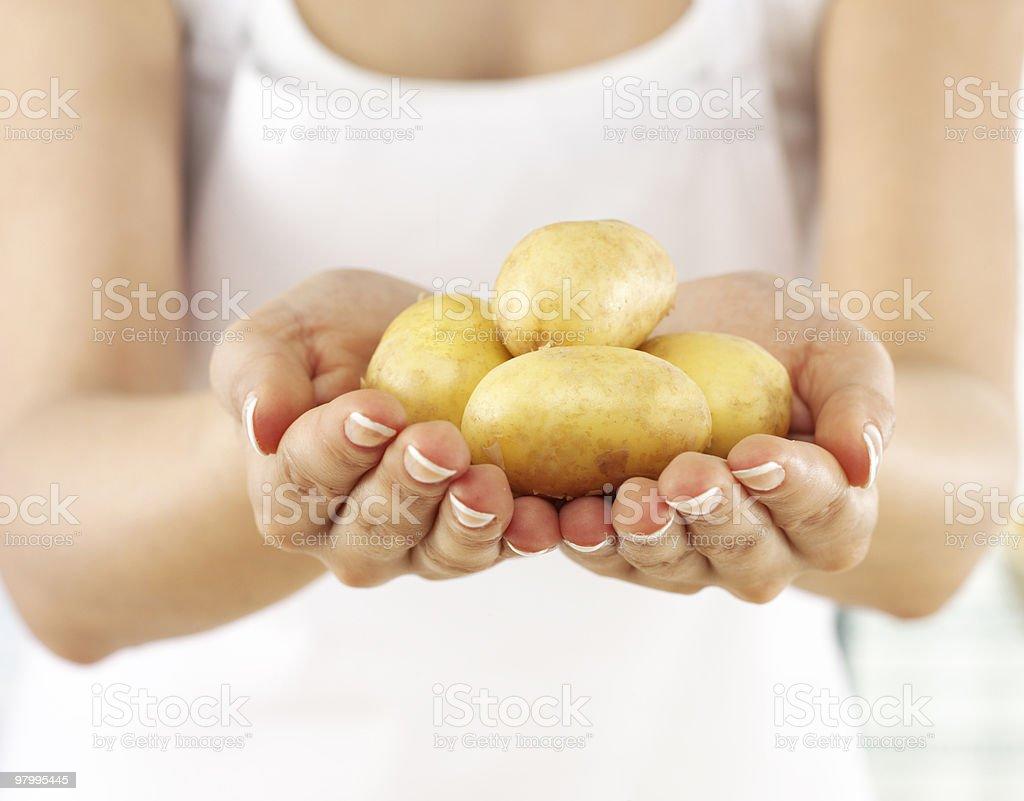 potatoes royalty free stockfoto