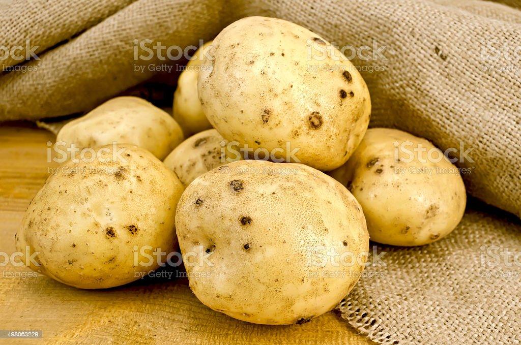 Potatoes yellow on sacking royalty-free stock photo