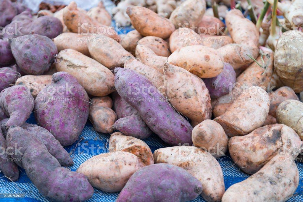 Potatos, purple and orange on the shelves of the market. stock photo