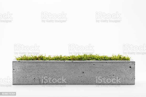 Pots of concrete picture id626679264?b=1&k=6&m=626679264&s=612x612&h=1zjhfmytmle2g9aql0pipfgyibkr5sdafgy6aivhuww=