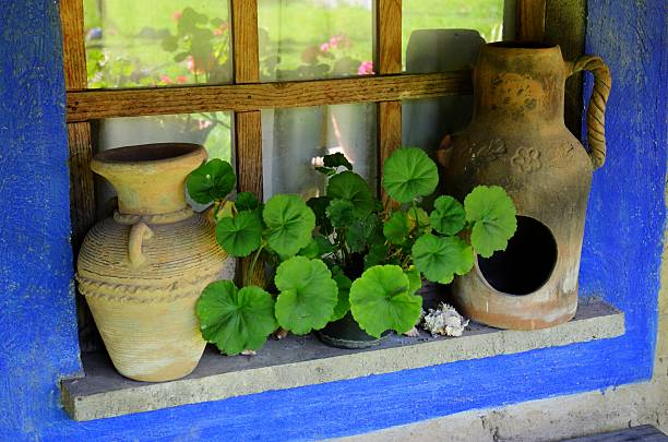 Pots on a Windowsill stock photo