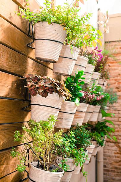 töpfe mit pflanzen rack - paletten terrasse stock-fotos und bilder