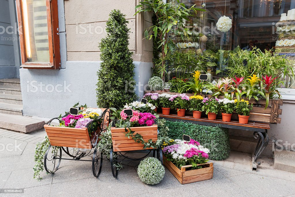 Potted flowers on showcase near the flower shop. Spring sale stock photo