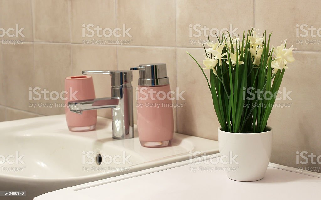 Potted plant in a bathroom stock photo