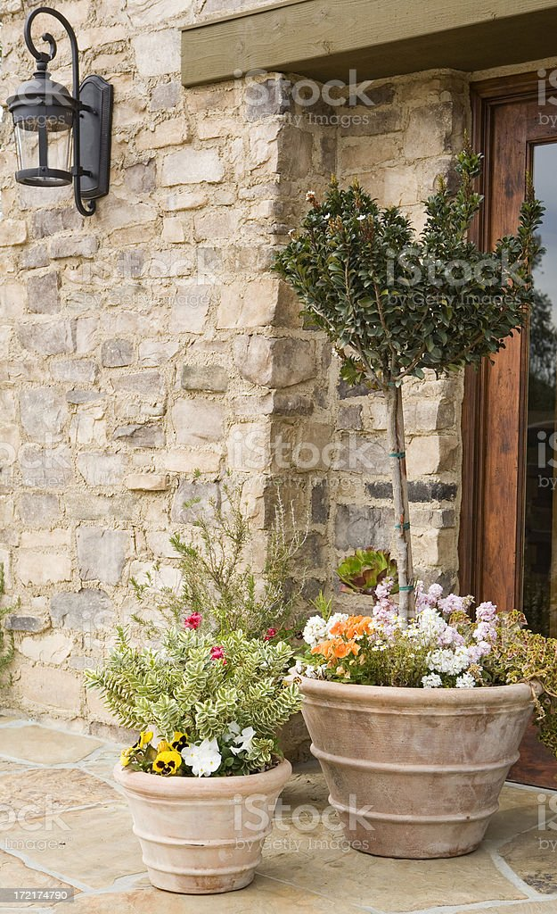 Potted Plants and Flagstone royalty-free stock photo