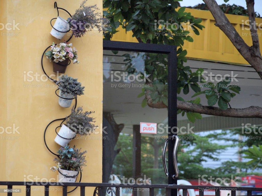 Plantes en pot - Photo de Architecture libre de droits