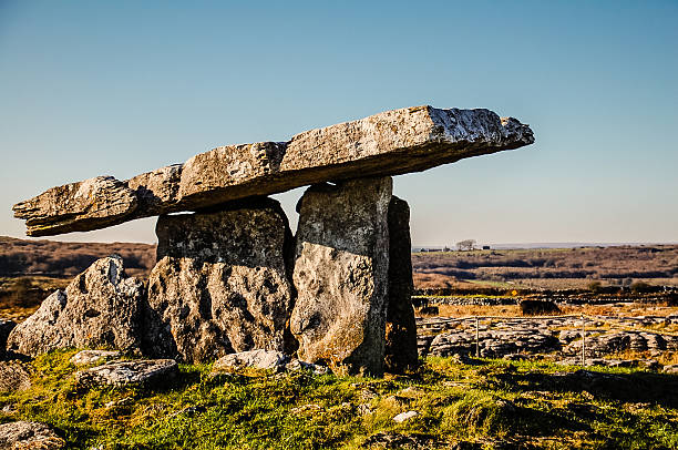 Poulnabrone Dolmen - Ancient Irish Burial Tomb Poulnabrone Dolmen is an Ancient Stone Burial Tomb in the Burren Region of Western Ireland. Notice the Cows grazing in the Distance. portal dolmen stock pictures, royalty-free photos & images