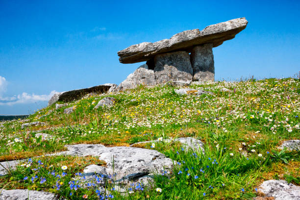 poulnabrone dolmen portal tomb at the burren in county clare, ireland. - the burren stock pictures, royalty-free photos & images