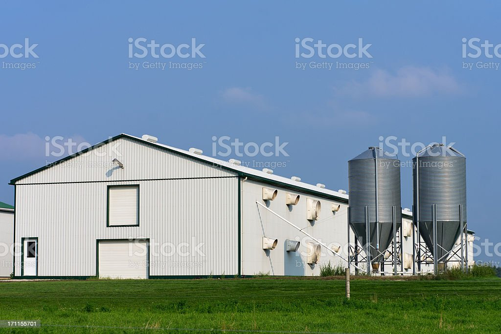 Poultry Barn with Feed Bins stock photo
