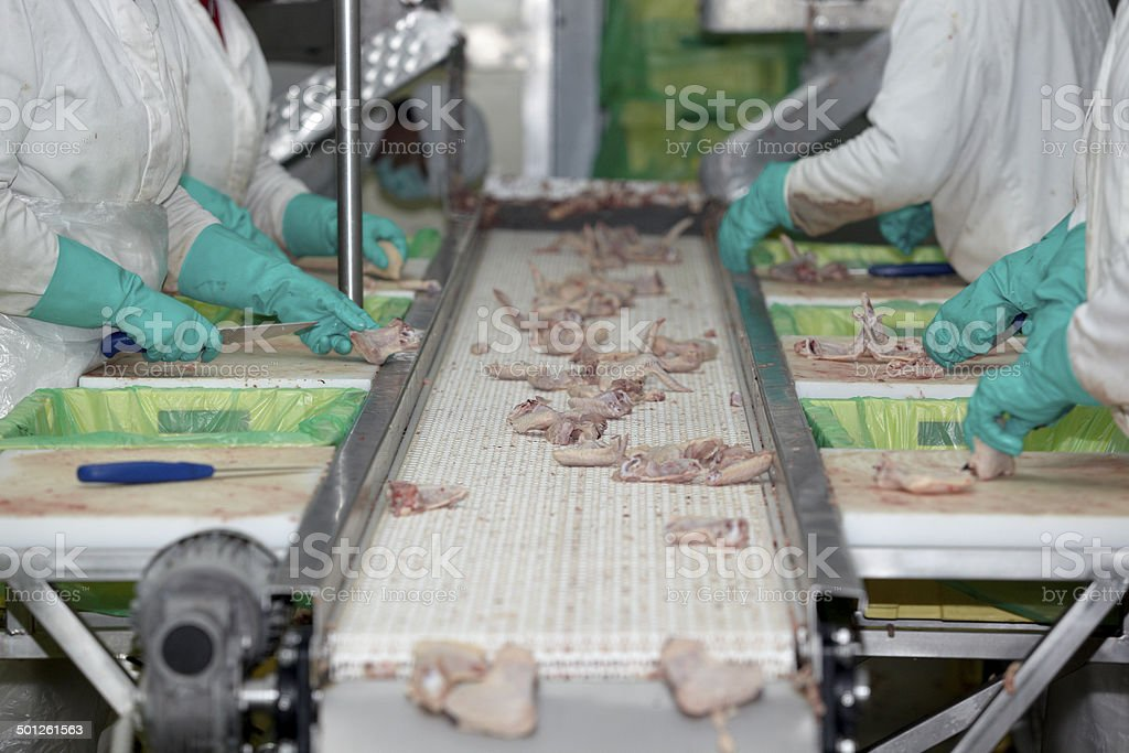 poultry processing meat food industry stock photo