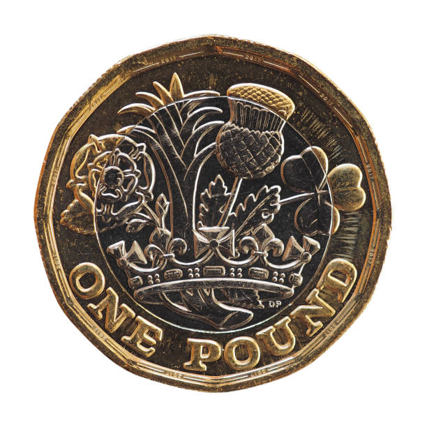 1 pound coin, United Kingdom isolated over white 1 pound coin money (GBP), currency of United Kingdom isolated over white background one pound coin stock pictures, royalty-free photos & images