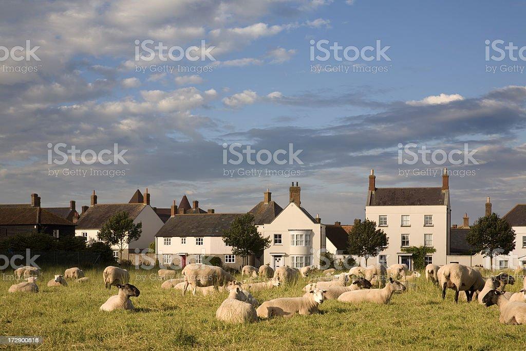 Poundbury royalty-free stock photo