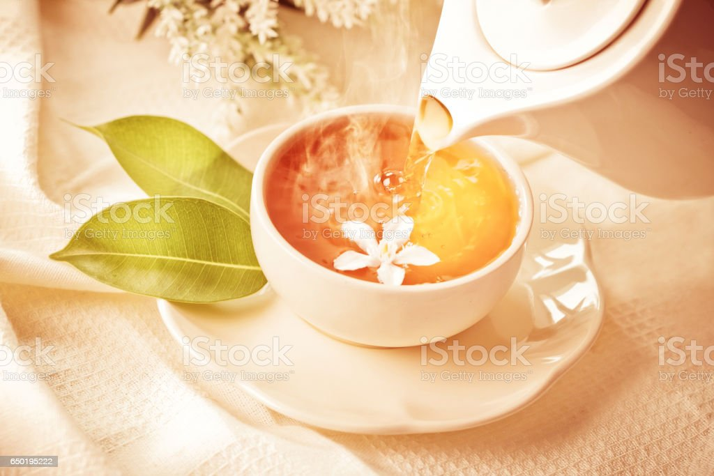pouring hot jasmine tea in a white tea cup stock photo
