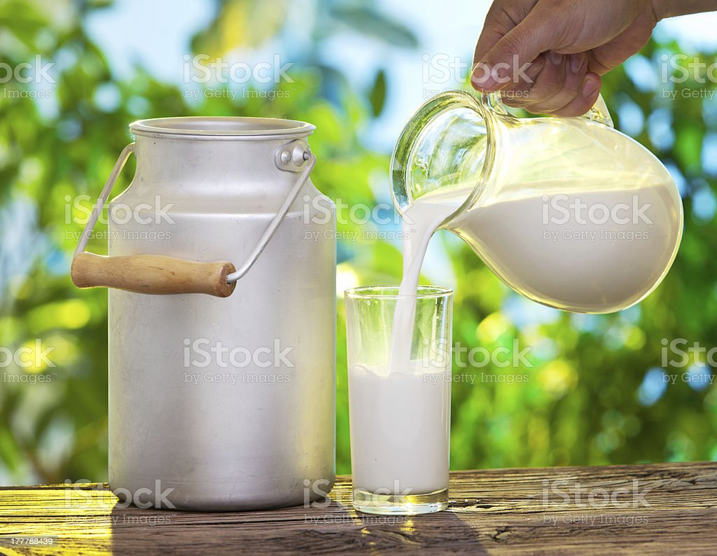 Pouring milk in the glass. stock photo